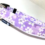 淡桜ラベンダー