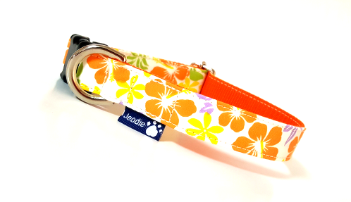 プチハワイアン オレンジ
